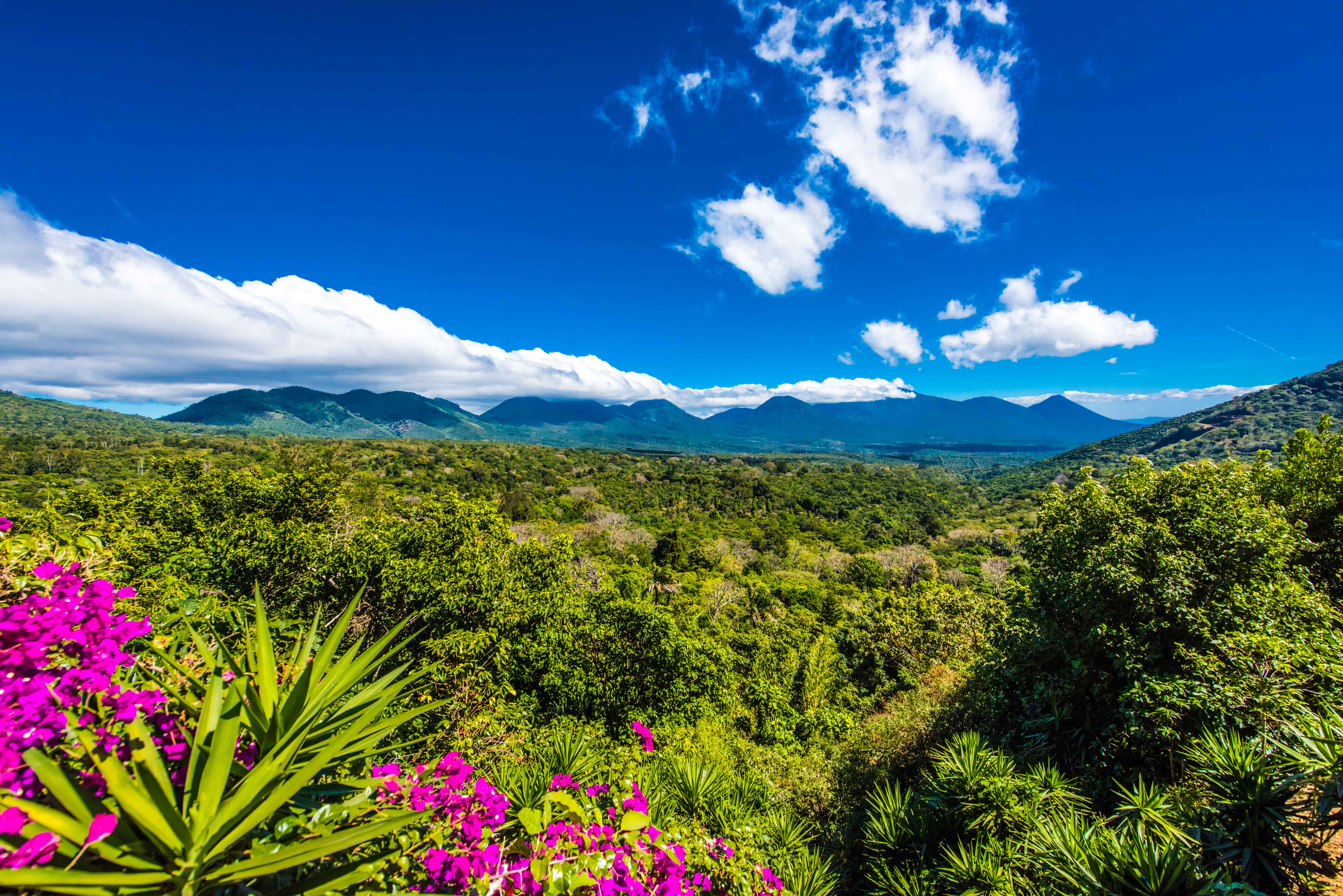Top Things To Do In Ruta De Las Flores El Salvador A Life Well Travelled
